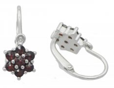 BG garnet children's earrings 362